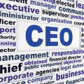 Der CEO steht im Machtkampf mit dem Data Protection Officer (Bild: Pinterest)