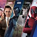 Disney Plus hat mehrere Marken im Angebot (Foto: disneyplus.com)