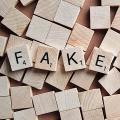 In Deutschland wird vor ausländischen Fake-News gewarnt (Symbolbild: Pixabay/ Wokandapix)