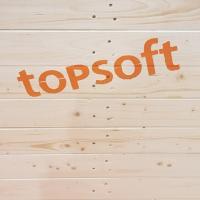 An der Topsoft geben wieder über 100 Aussteller Einblick in neueste Digitalisierungslösungen (Foto: Kapi)